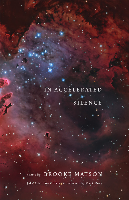 In Accelerated Silence: Poems book cover