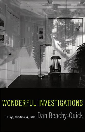Wonderful Investigations: Essays, Meditations, Tales