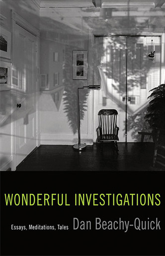 Wonderful Investigations: Essays, Meditations, Tales